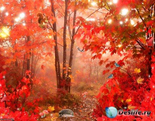 PSD исходник - Сказочный осенний лес
