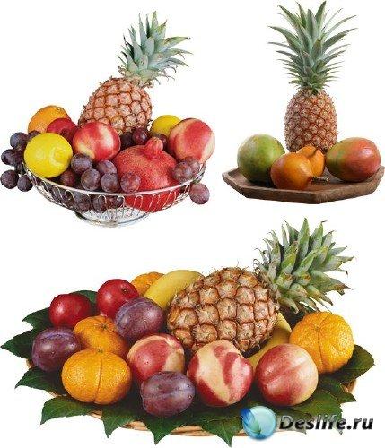 Фотосток: натюрморты с ананасами