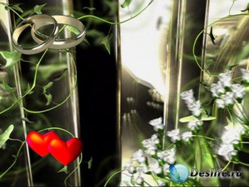 Свадебный футаж заставка – два кольца, два сердца