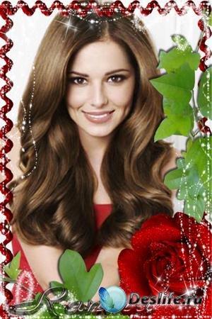 Рамка для фотошопа с красной розой просто прелесть