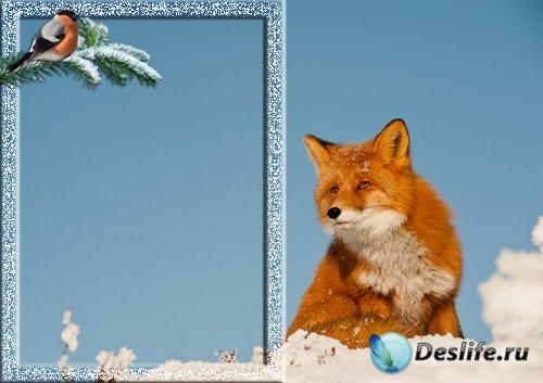 Рамка для фото - Зимушка-зима