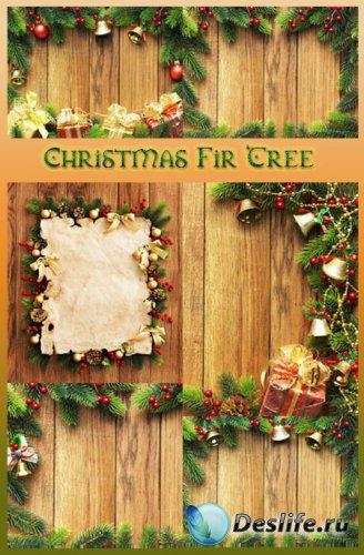 Рождественские таблички с еловыми ветками