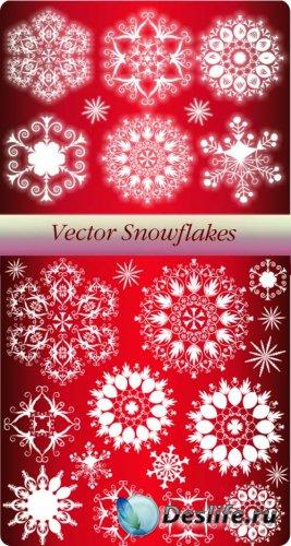 Набор векторных снежинок