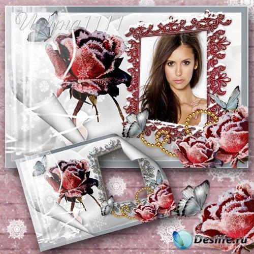 Рамка для фотошоп  - Зимняя роза