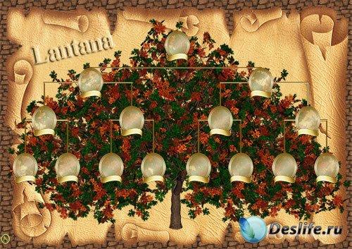 Исходник для фотошопа - Родовое дерево