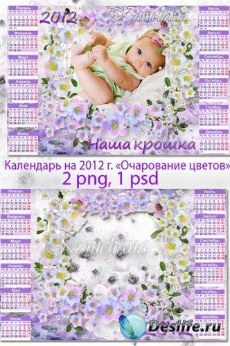 Календарь-рамка на 2012 год - Очарование цветов