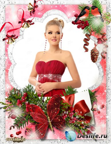 Набор новогодних рамок для фото - Снегири на ёлочке
