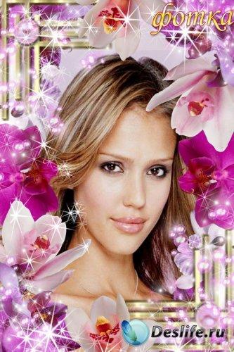 Рамочка для ваших фото - Орхидеи