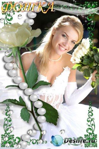 Рамка для фотошоп - Белая роза и жемчуг