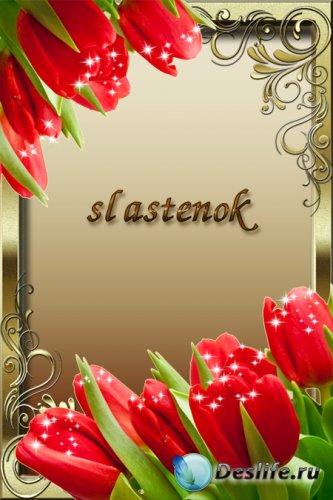 Весенняя рамка для фотошопа - Тюльпаны со звездочками