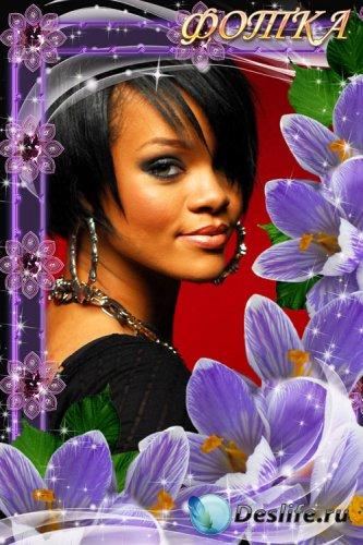Рамка для фотошоп - Фиолетовые цветы