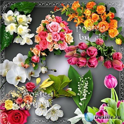 Красивый цветочный клипарт