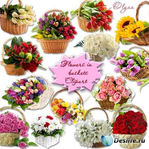Цветы в плетеных корзинках – клипарт PNG на прозрачном фоне
