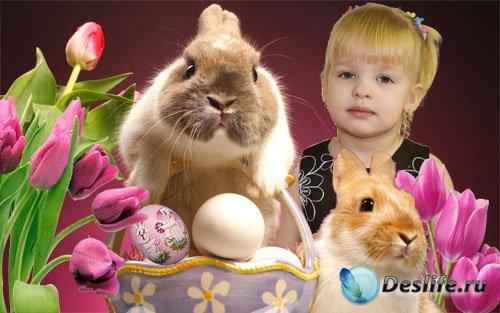 Рамка Пасхальный кролик