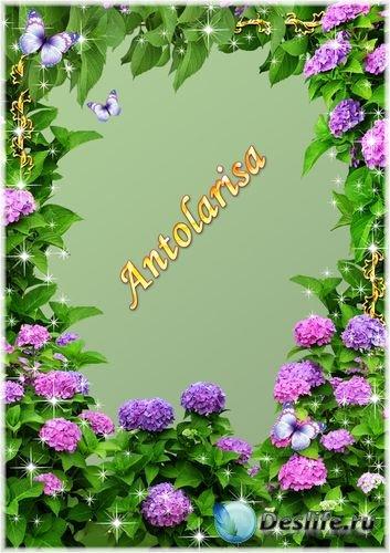 Рамка для фото - Садовые цветы
