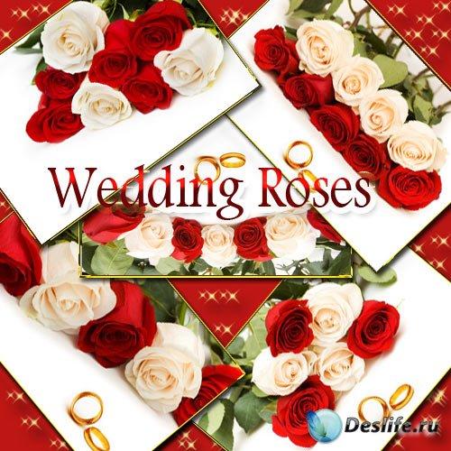 Клип-арт цветочный - Свадебные розы