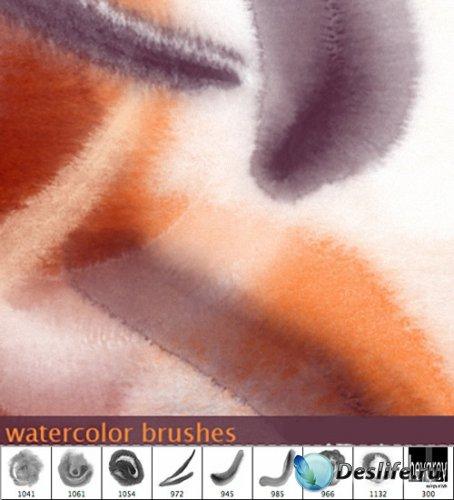 Кисти - Водяной цвет