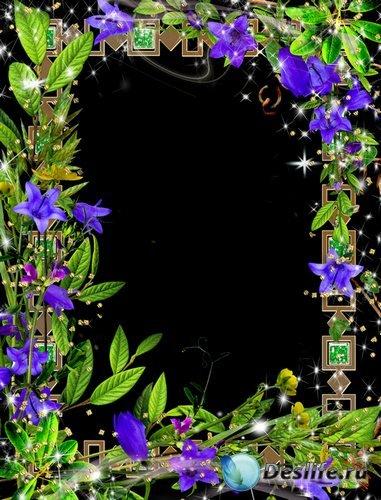 Рамка для фото –  Милые синие колокольчики