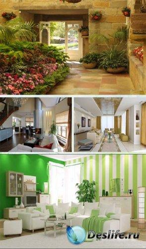 Дизайн - Цветы в интерьере