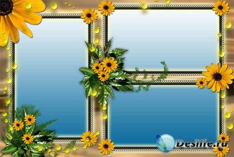 Рамка для фотошопа-летние подсолнухи
