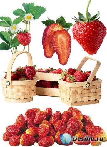 Фотосток: ягоды - клубника и земляника