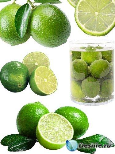 Фотсток: цитрусовые фрукты - лайм