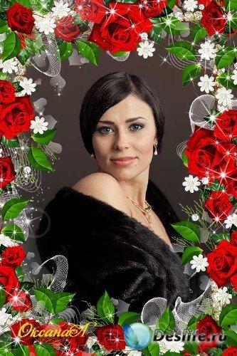 Рамка для фото - Аромат прекрасной красной розы