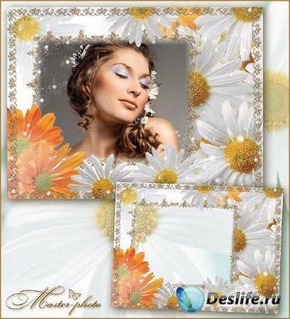 Цветочная рамка для фотошопа - Ромашковый сад