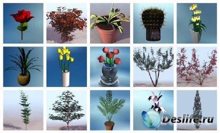 3d модели растений