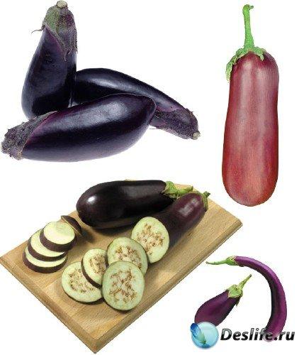 Фотосток: овощи - кабачки, баклажаны, кабаки, сининькие