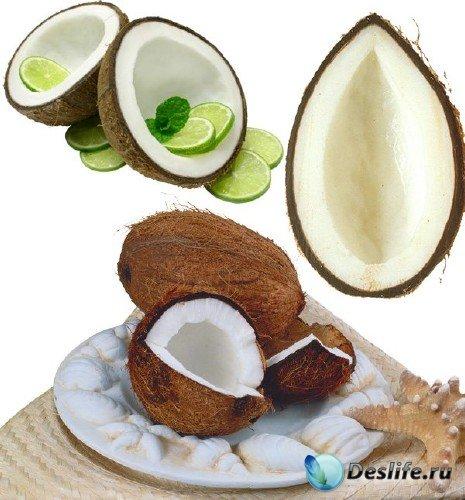 Фотосток: орехи - кокос