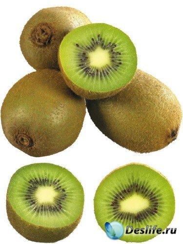 Фотосток: экзотические фрукты - Киви