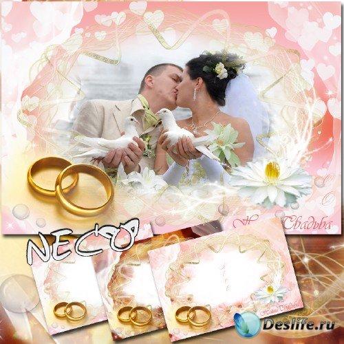 Три нежные свадебные рамки - Наша свадьба