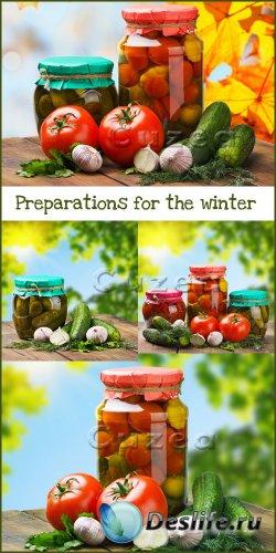 Овощные заготовки на зиму - растровый клипарт