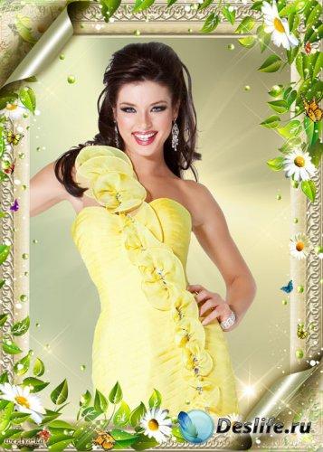 Рамка для фотошопа - Ромашки, бабочки и зеленая листва