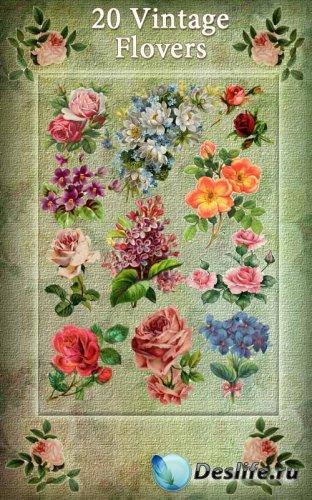 Клипарт - Винтажные цветы