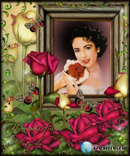 Цветочная рамка для фотошопа - Удивительные розы в стиле винтаж