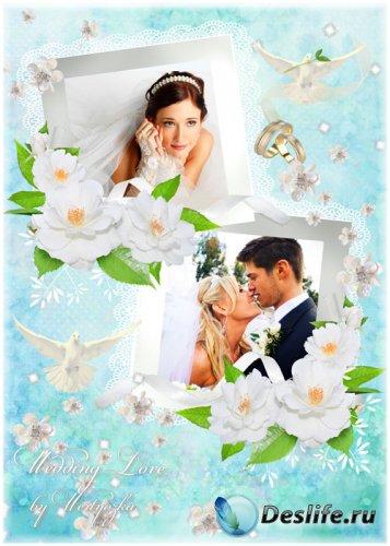 Рамка для фотошопа - Свадебные белоснежные голуби на свадьбу