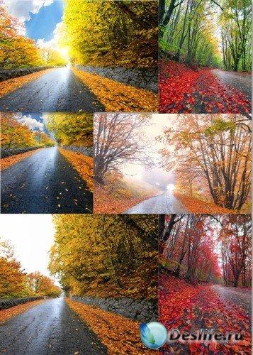 Клипарт - Осенние дорожные пейзажи