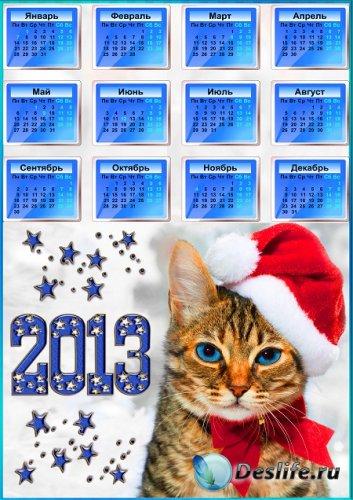 Календарь с котом для печати