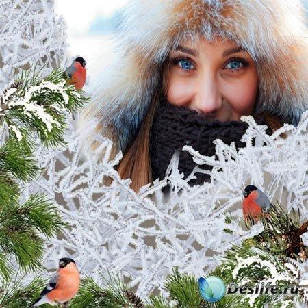 Рамка женская - Снегири