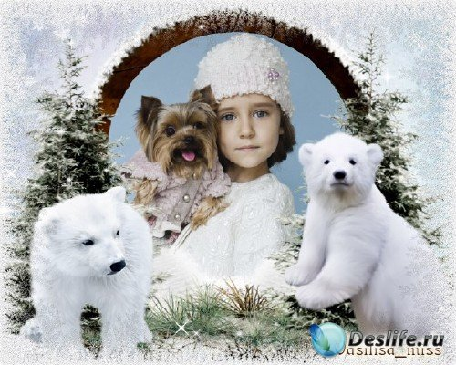 Новогодняя зимняя рамка – Белые медведи с лёгкой морозной изморозью
