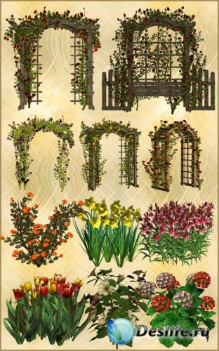 Клипарт PNG - Арки и цветы