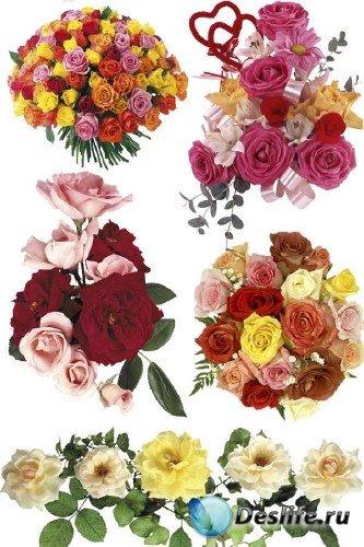 Розы - букеты и икебаны (фотосток часть первая)