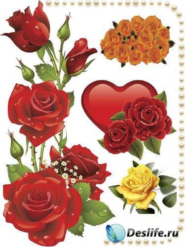 Фотосток: рисованные розы (часть вторая)