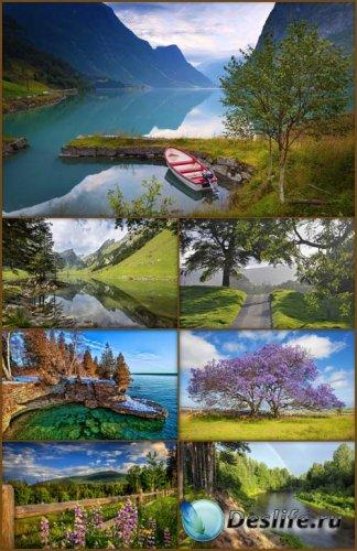 Обои - Красивые пейзажи 3