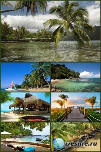 Обои - Тропический Рай