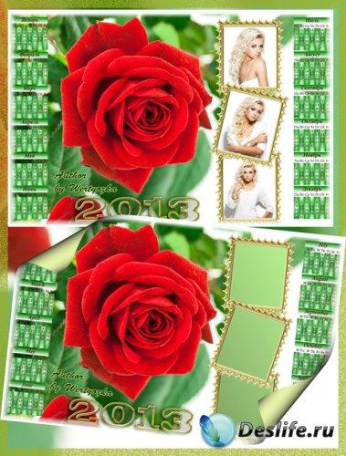 Календарь 2013 с вырезами для фото - Красная роза