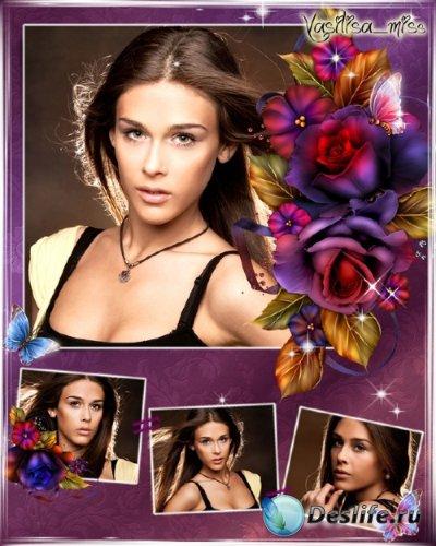 Цветочная рамка - Осенняя роза