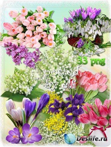 Весенние цветы - подснежники, крокусы, тюльпаны, мимоза, сирень на прозрачн ...
